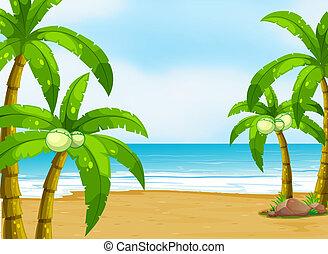 A peaceful beach