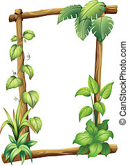 A vine plant