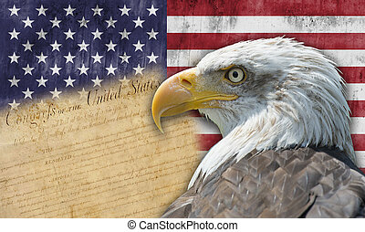 American flag with the bald eagle and some historic documents