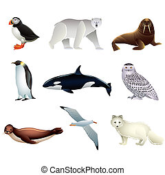 Popular Arctic animals high detailed vector collection