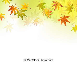 Autumn background - fall leaf