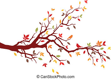 Autumn tree with colorful leaves, vector