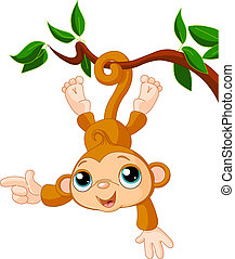 Baby monkey on a tree showing
