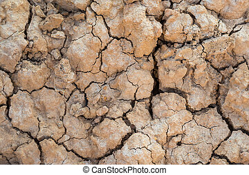 Background of Dry cracked soil during drought