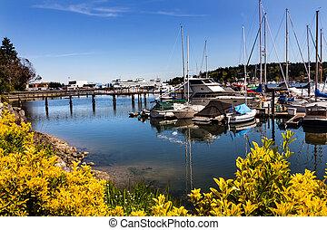 Bainbridge Island Harbor Docks Piers Sailboats Washington Pacific Northwest