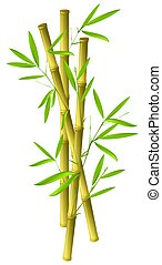 Illustration of bamboo ranches isolated on white