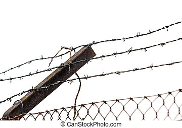 barbed wires on white background. The concept of the refugees