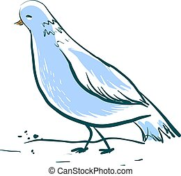 Beautiful blue dove, illustration, vector on white background.