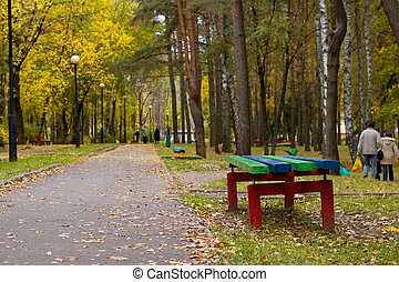 Bench in yellow autumn park close up