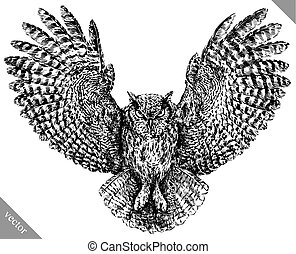 black and white engrave isolated owl vector art