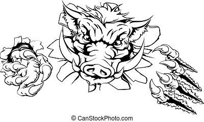 Boar claw breakthrough