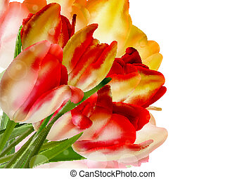 Border of red tulips over a white. EPS 10