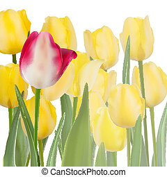 Bunch of yellow tulips with copyspace. EPS 10