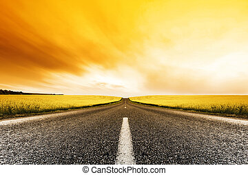 Road travelling through a Canola Field at Sunset