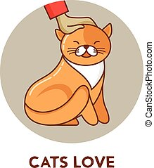 cat - vector icon and illustration