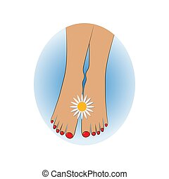 Chamomile flower between woman's feet close up