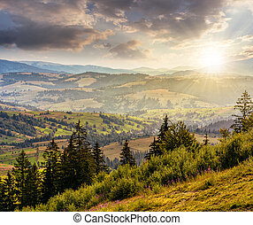 classic Carpathian mountain landscape in summer at sunset