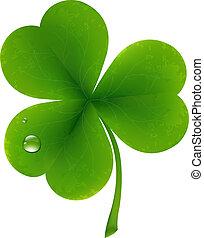 Clover Four Leaf For Saint Patricks Day, Vector Illustration