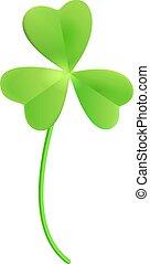 Clover shamrock isolated on white. Green clover leaf for good luck