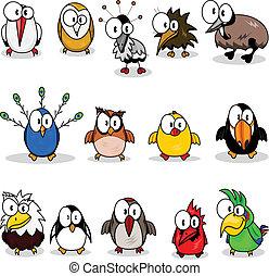 Cartoon birds (chicken, eagle owl, toucan, penguin, peacock , owl, parrot, woodpecker, cardinal-bird, ostrich, crane, stork, kiwi, eagle).