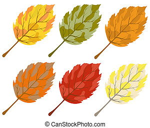 Collection of color autumn leaves