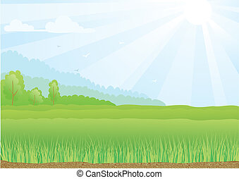 Color Illustration of green field with sunshine rays and blue sky.