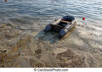 Contaminated sea