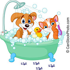 Very cute Dog and Cat having a soapy bath