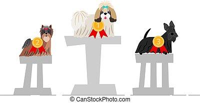 Dogs winner podium
