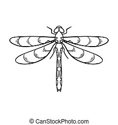 Dragonfly icon in outline design isolated on white background. Insects symbol stock bitmap, rastr illustration.