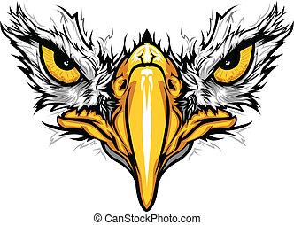 Eagle Eyes and Beak Vector Illustration