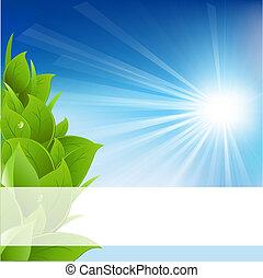 Eco Background, Isolated On White Background, Vector Illustration