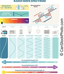 Electromagnetic Waves: Radio Wave Spectrum. Vector illustration diagram with wavelength, frequency, harmfulness and wave structure.