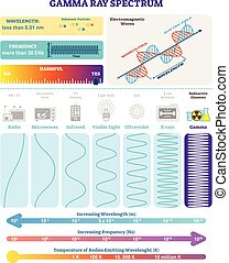 Electromagnetic Waves: Radioactive Gamma Rays Spectrum. Vector illustration diagram with wavelength, frequency, harmfulness and wave structure.