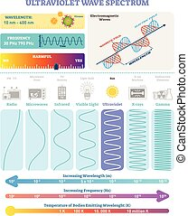Electromagnetic Waves: Ultraviolet Wave Spectrum. Vector illustration diagram with wavelength, frequency, harmfulness and wave structure.
