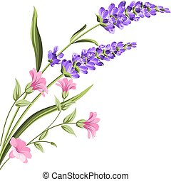 Elegant card with lavender flowers.