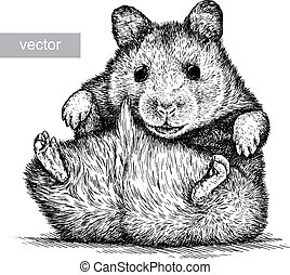 engrave isolated vector hamster illustration sketch. linear art