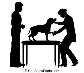 Female vet with dog