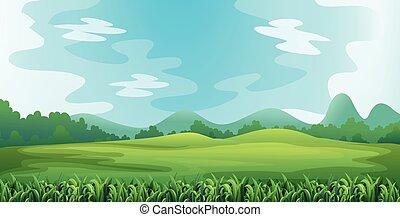 Illustration of a green field