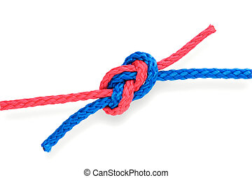 Fisher's figure-eight knot with red and blue ropes. Isolated on white. Tight