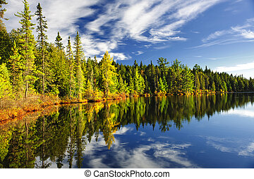 Beautiful forest reflecting on calm lake shore at Algonquin Park, Canada