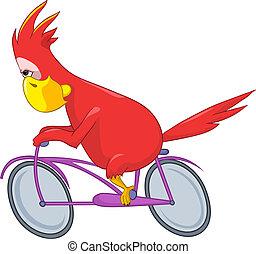 Funny Parrot. Biker.