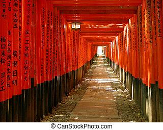 an interesting orange gates tunnel in the Inari Shrine in Kyoto, Japan