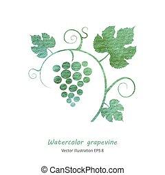 Grape vine seamless background.