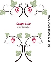 Grape vines set.