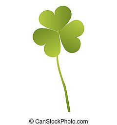 Green clover leaf isolated on white background. This has clipping path.e