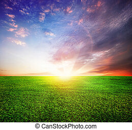 Green Field And Beautiful Sunset Or Sunrise