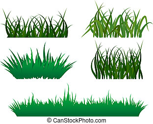 Green grass elements for design and decorate