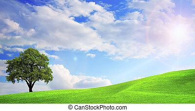Green nature landscape