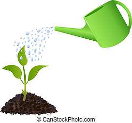 Young plant with watering can and water drops, Isolated On White
